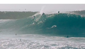California Swell Fest
