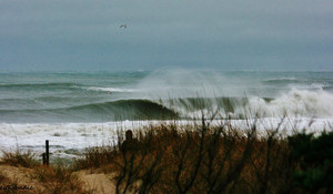 A Pumping Weekend in North Carolina