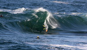 Surfing Shock Looks Near Impossible