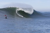 Mavericks Utility Swell