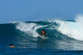 A Dreamy Fortnight in The Mentawais