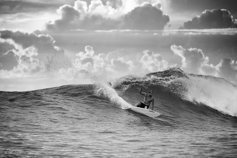 Big Tommie Bird with a stylish carve.
