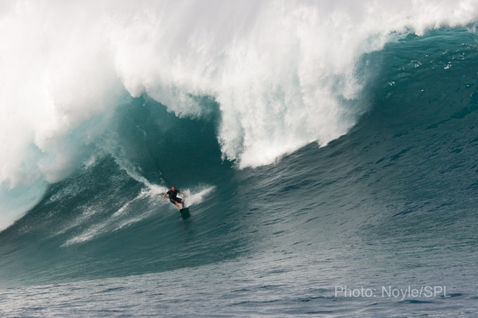 Unknown about to get lickings after going left at Jaws…