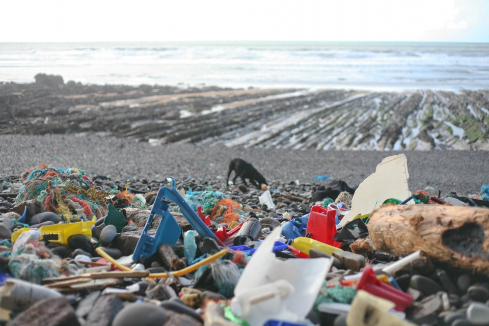 There are areas where the litter has been piled high by the high tides. At other places the coves have been washed clean.