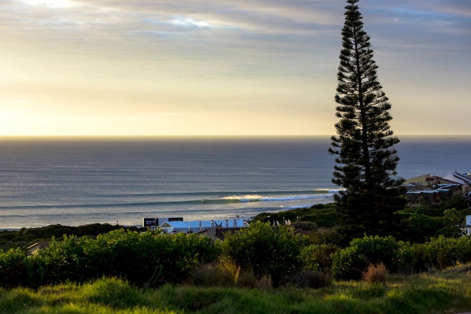 The view from above the hill, first light. The day the swell filled in the water was a glassy and pristine as it gets. A typical Point setup.