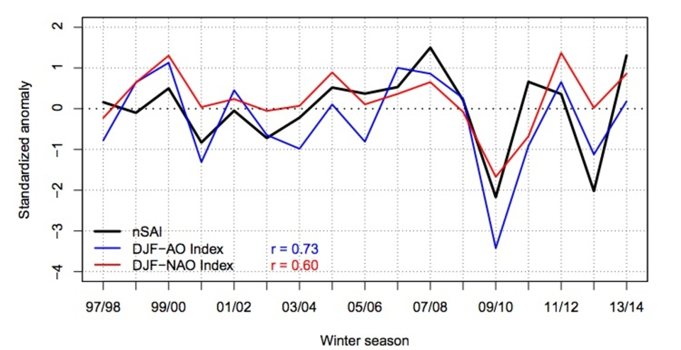 You don't need to be a scientist to see a link between snow cover (black line) and the North Atlantic Oscillation (red line)