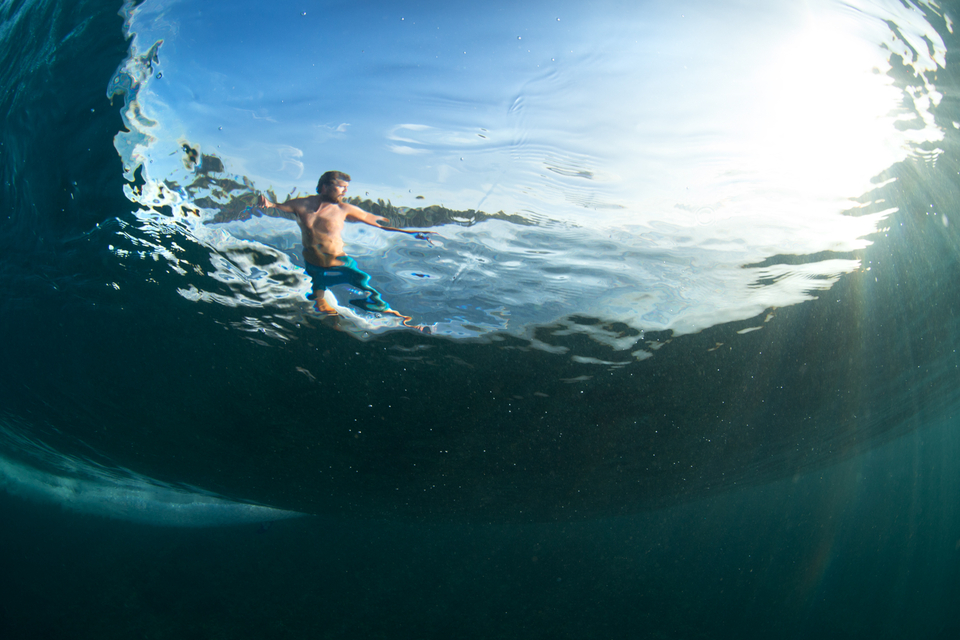 Through the Wave at Lizards