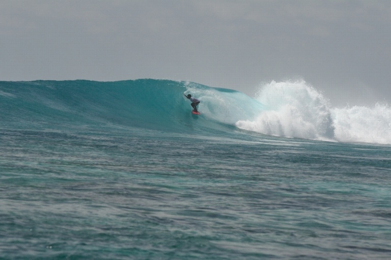 Surfatoll Madlives 's photo of Tiger Stripes