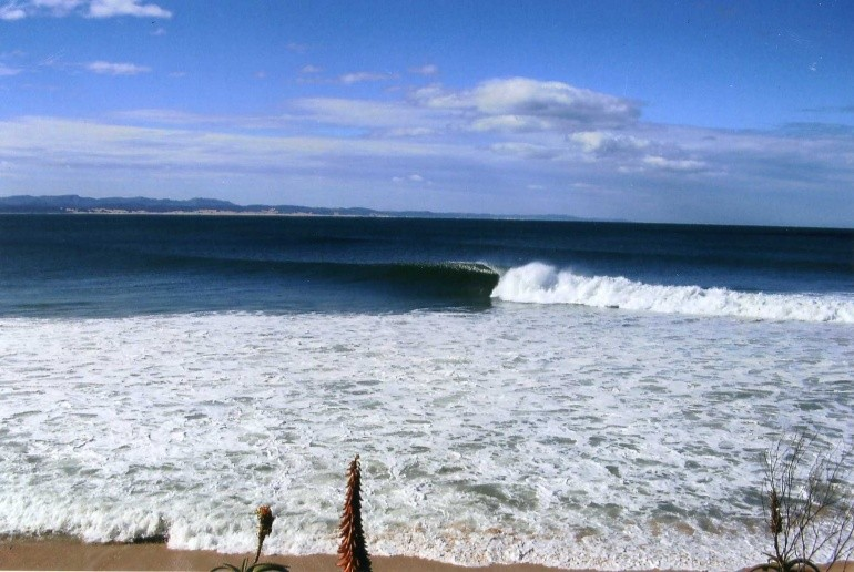 Dylan Sage's photo of Jeffreys Bay (J-Bay)