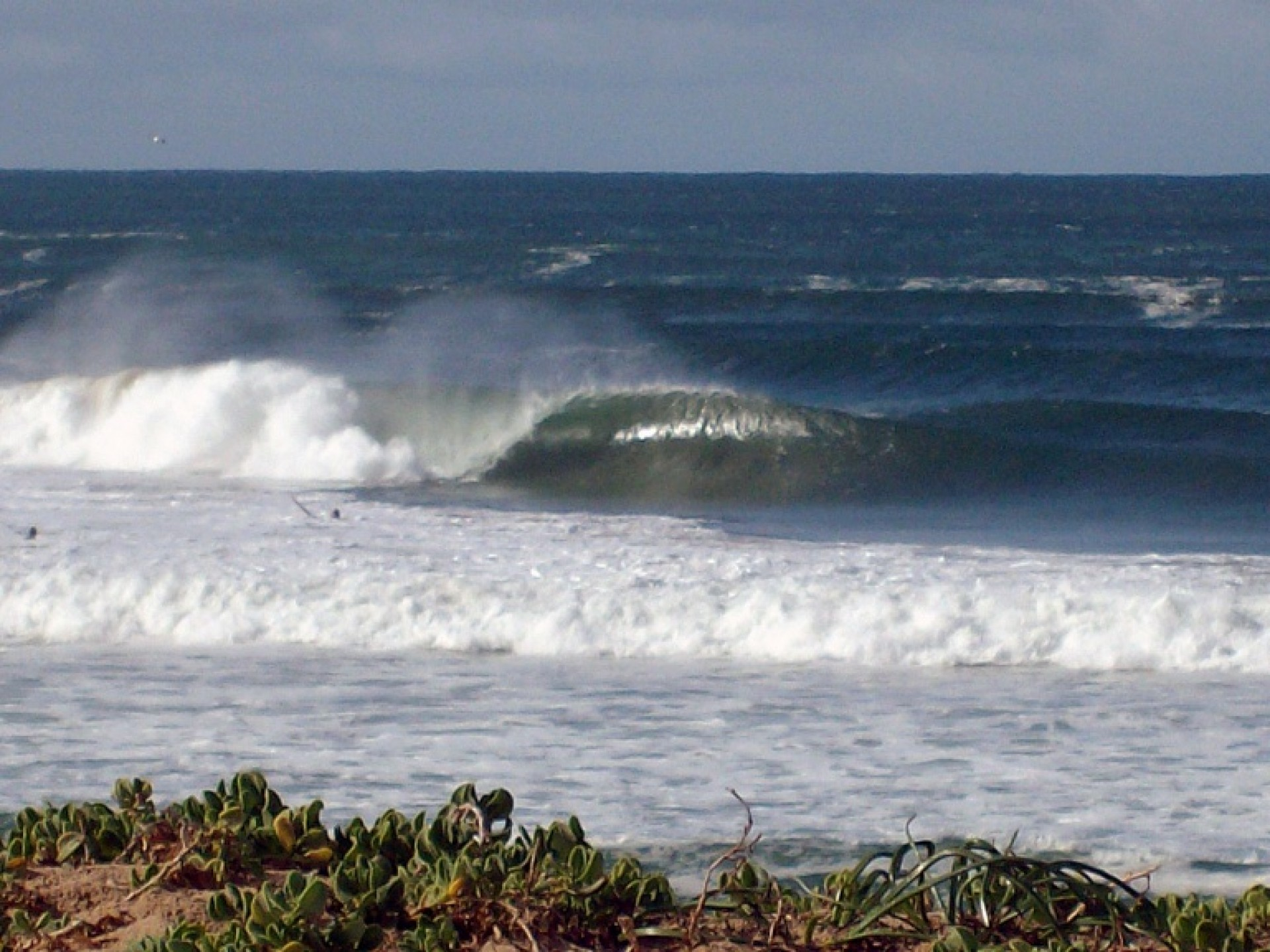 Dunn's photo of Mossel Bay