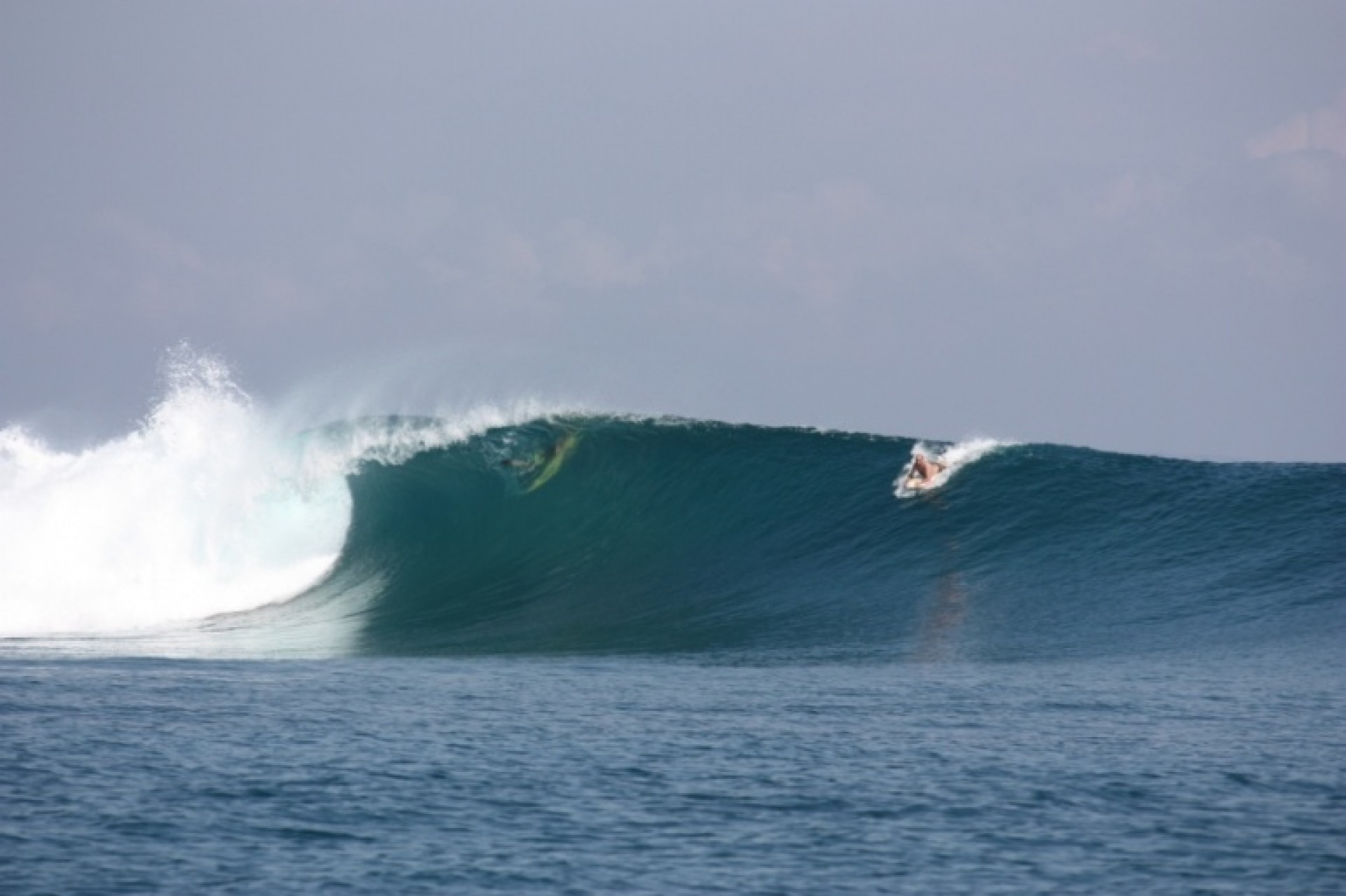 Indocean Surf Charters's photo of Scar Reef