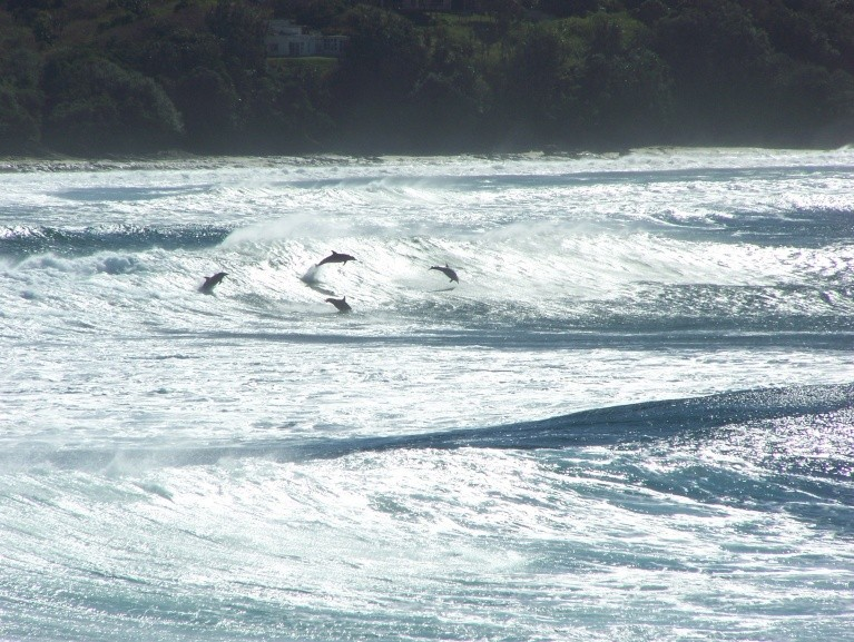 Gavin Rother's photo of Coffee Bay
