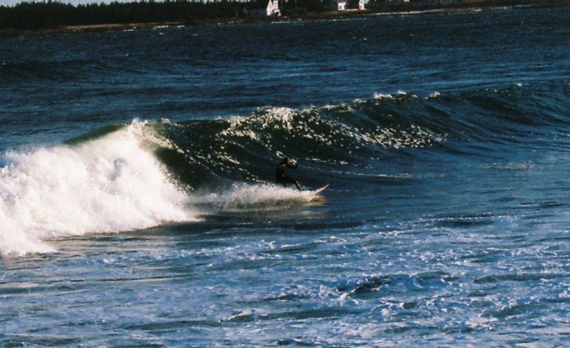 South Shore Soul Surfer's photo of Western Head