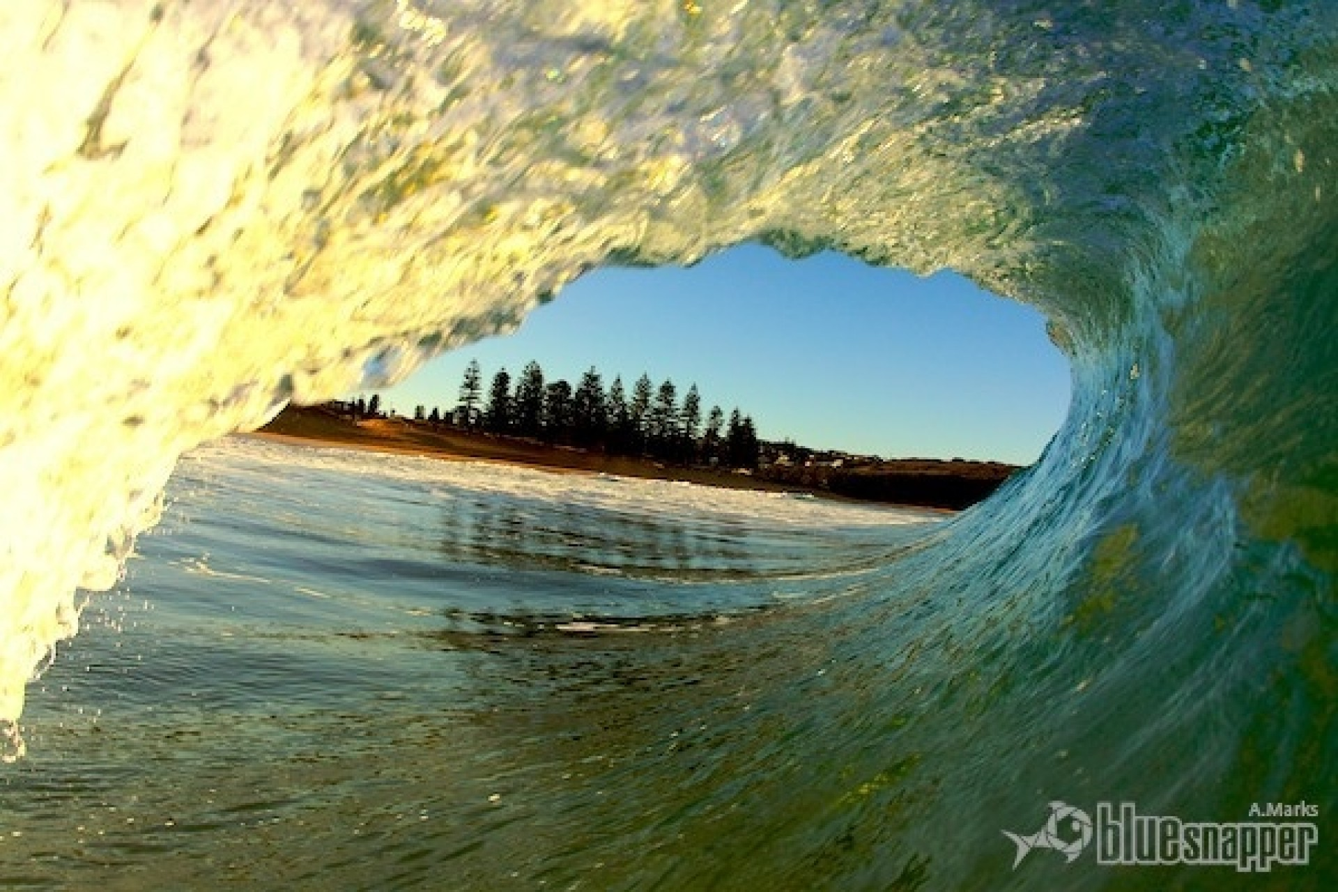 bluesnapper.com.au's photo of North Narrabeen