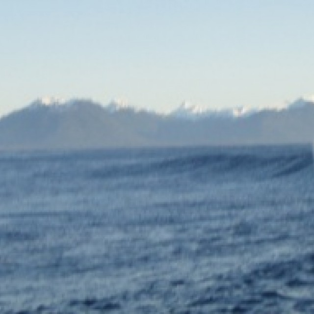 Photo of Sitka (The Wall)