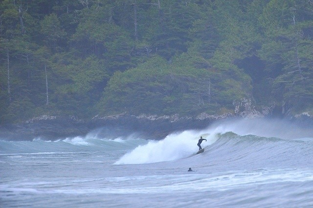 OregonSeanFoto's photo of Tofino (Cox Bay)