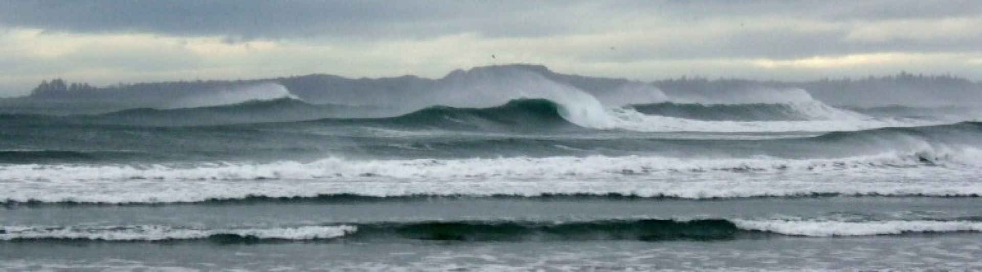 Jack beer's photo of Vancouver Island North (Long Beach)