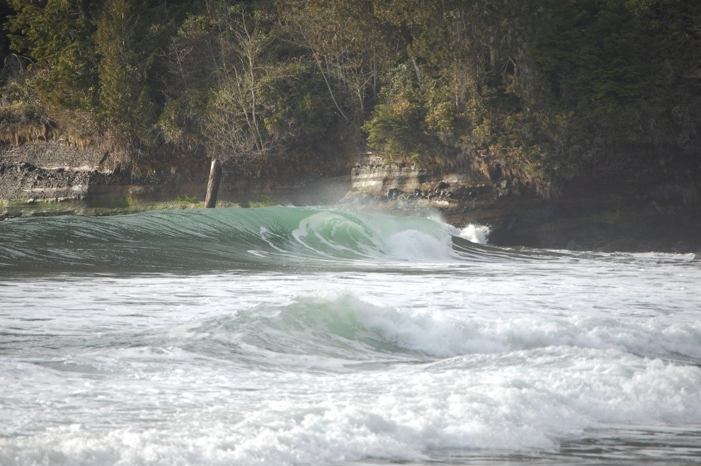 anonymous's photo of Vancouver Island South (Jordan River)