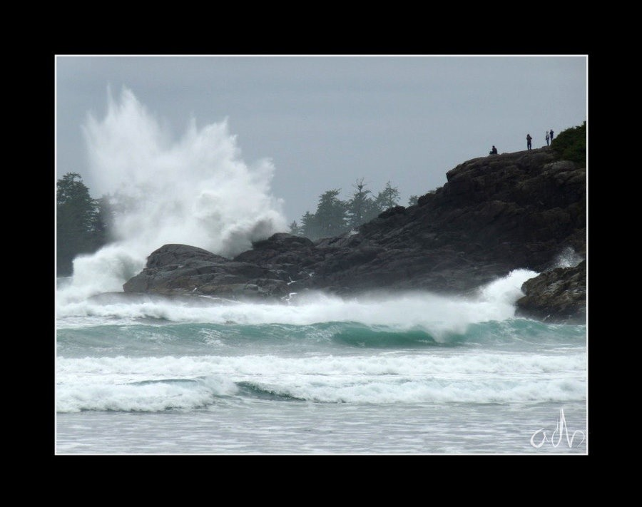 oceanic's photo of Tofino (Cox Bay)