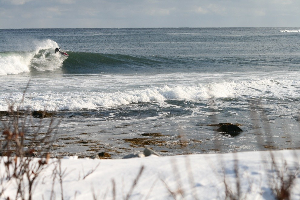 phil taylor's photo of Lawrencetown