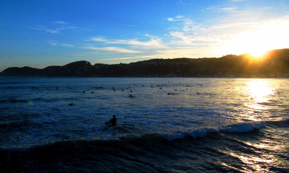 nadine v's photo of Lyall Bay