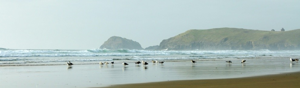 GarethDavison's photo of Perranporth (Droskyn)