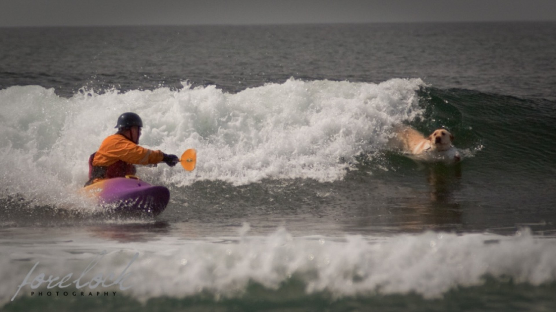 SurfKayakCancuk's photo of Lawrencetown