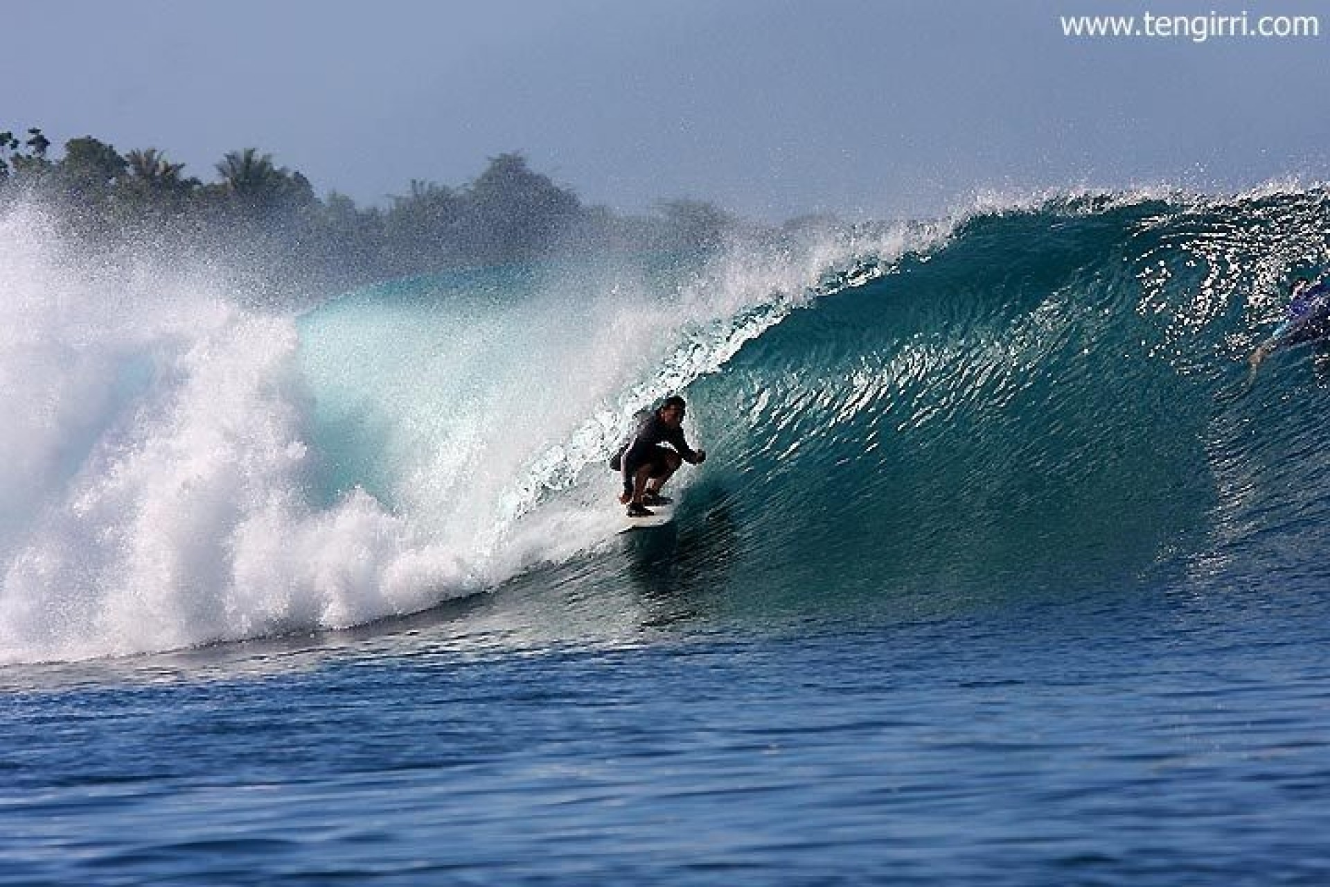 Tengirri Surf Charters's photo of Greenbush