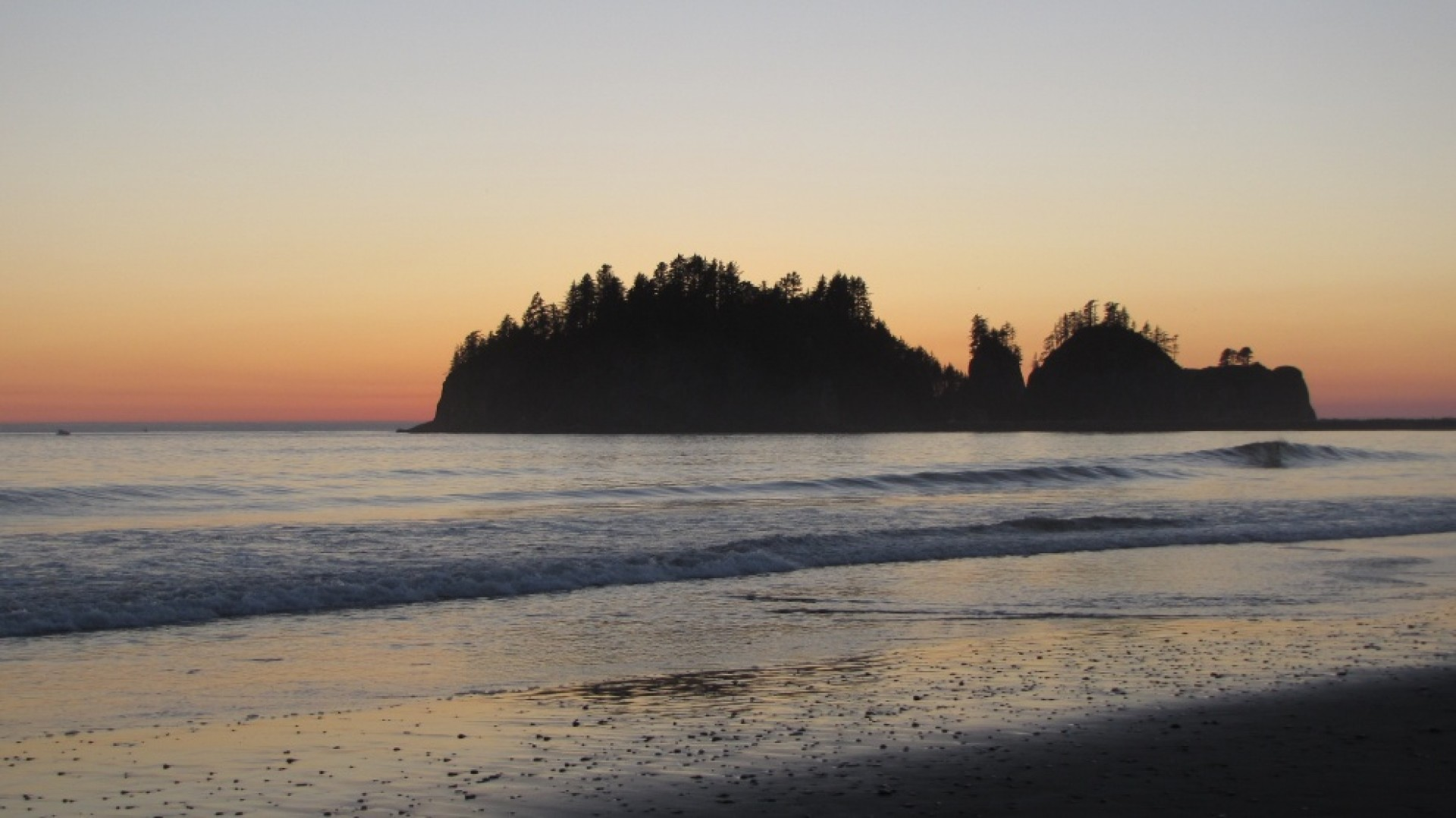 wasurfer's photo of La Push
