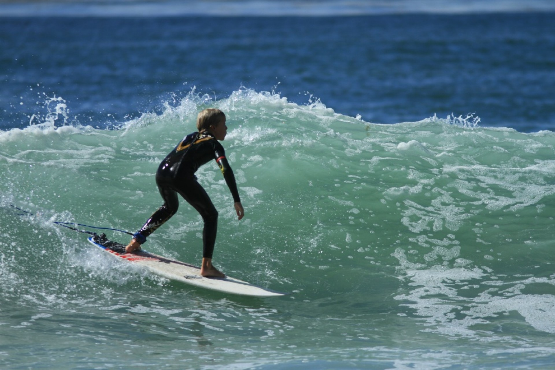 David Stelter's photo of Salt Creek