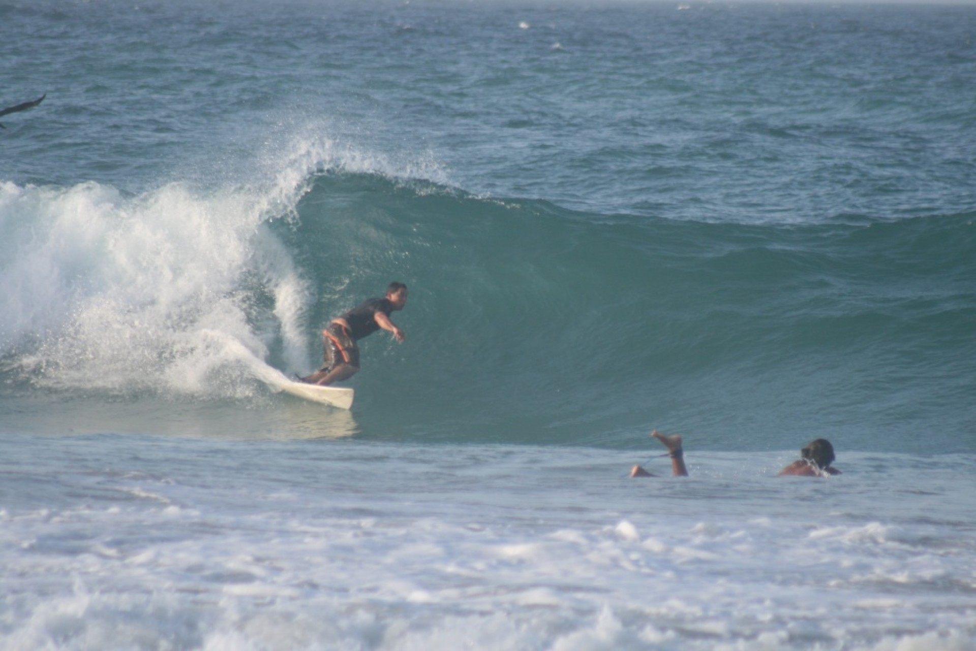 wilmer's photo of Playa Parguito