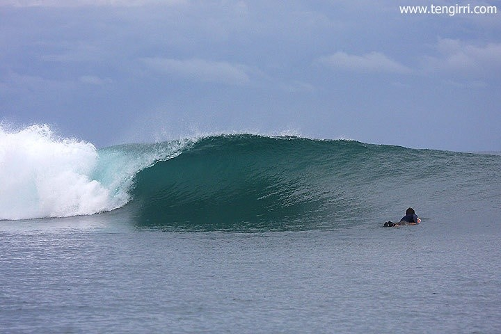 Tengirri Surf Charters's photo of Macaronis