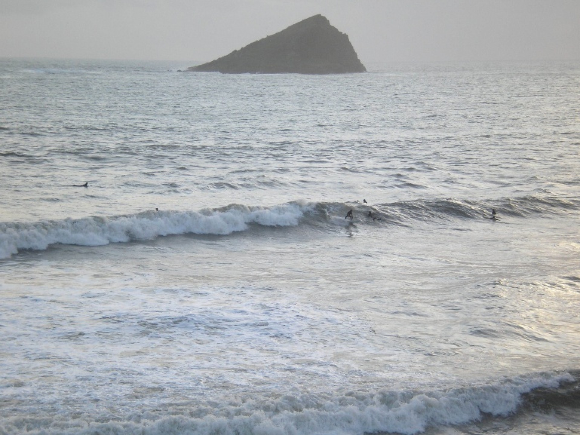 Spoogy's photo of Bantham