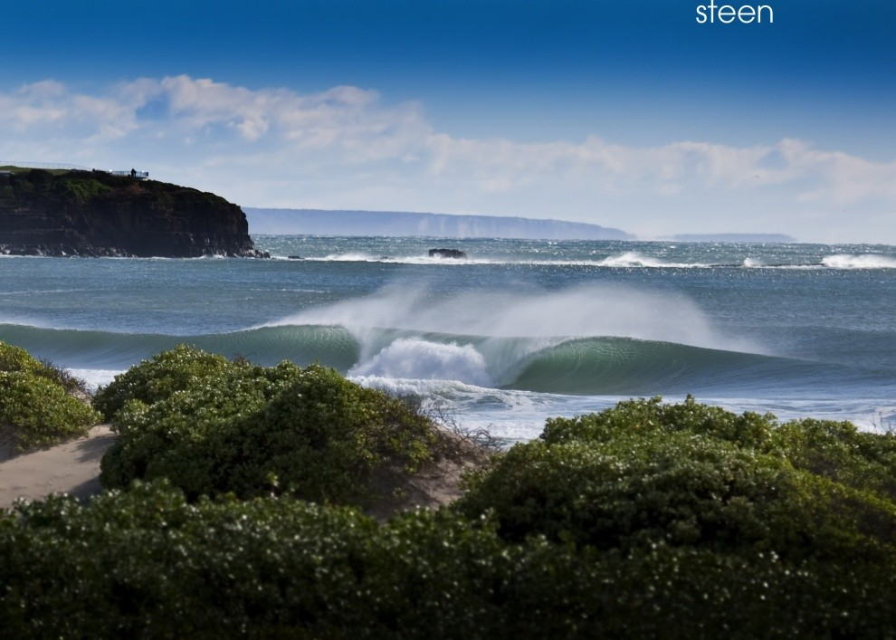 steeno's photo of Bombo