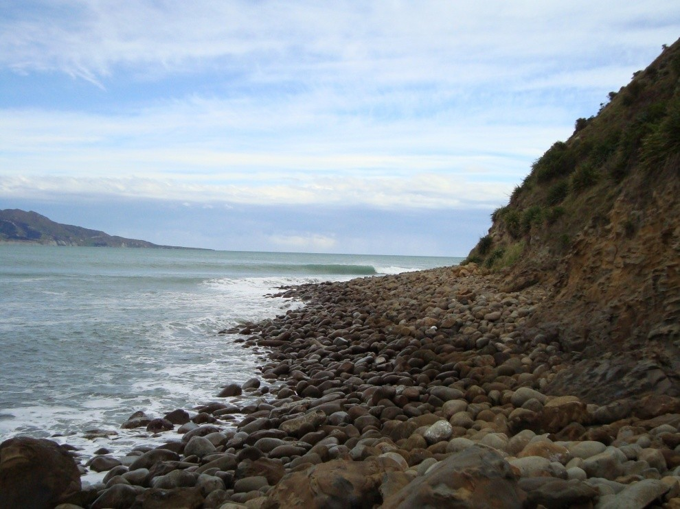 Russell Rice's photo of Mahia Reef