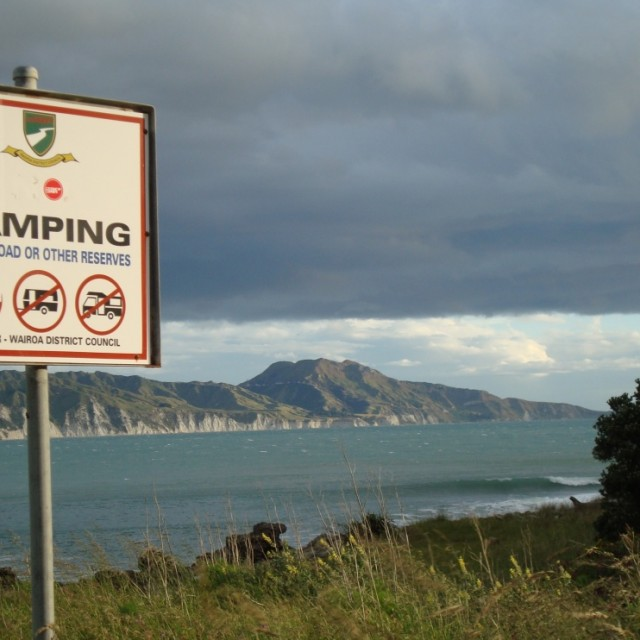 Photo of Mahia Reef