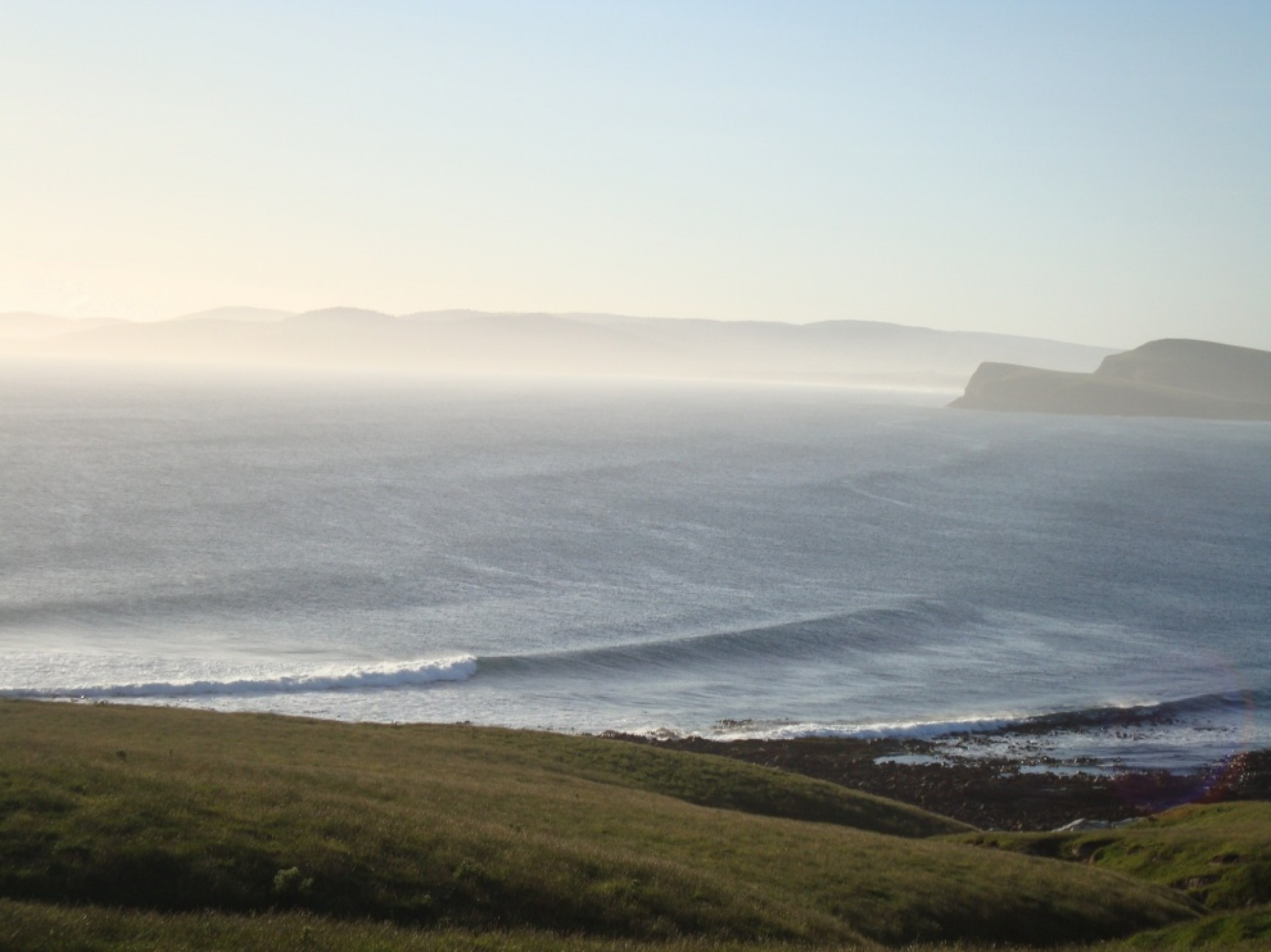 Russell Rice's photo of St Clair (Dunedin)