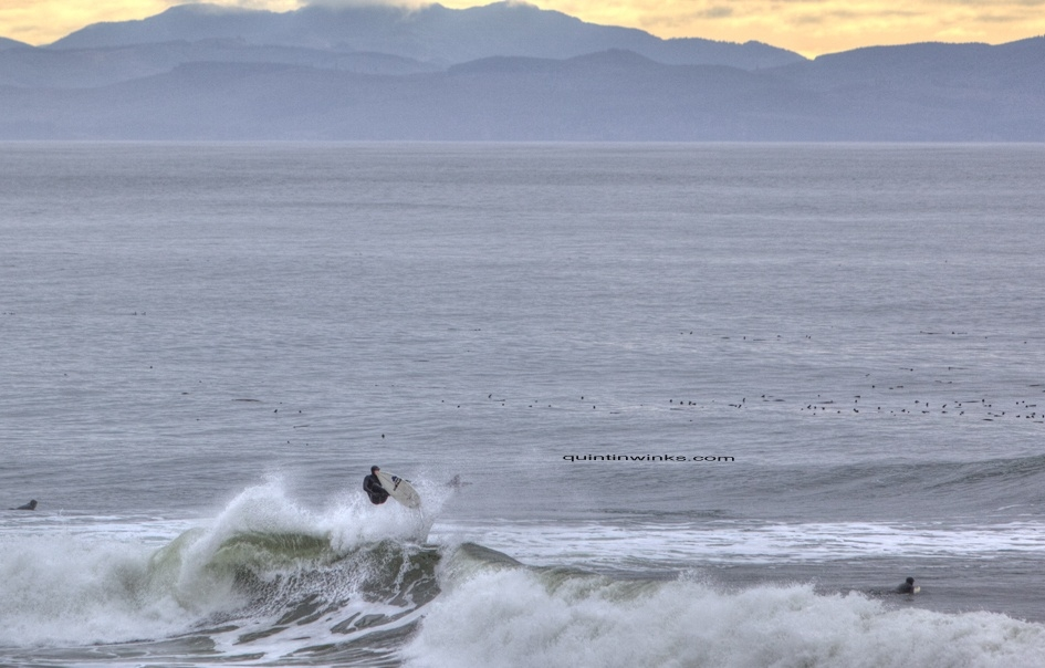 Quink's photo of Vancouver Island South (Jordan River)