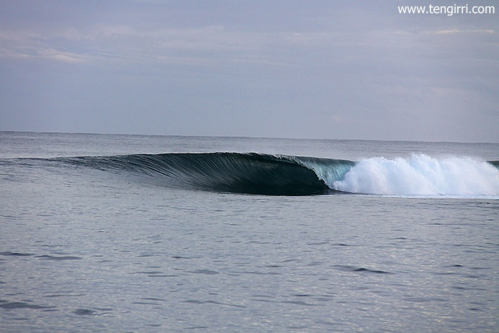 Tengirri Surf Charters's photo of Bintangs