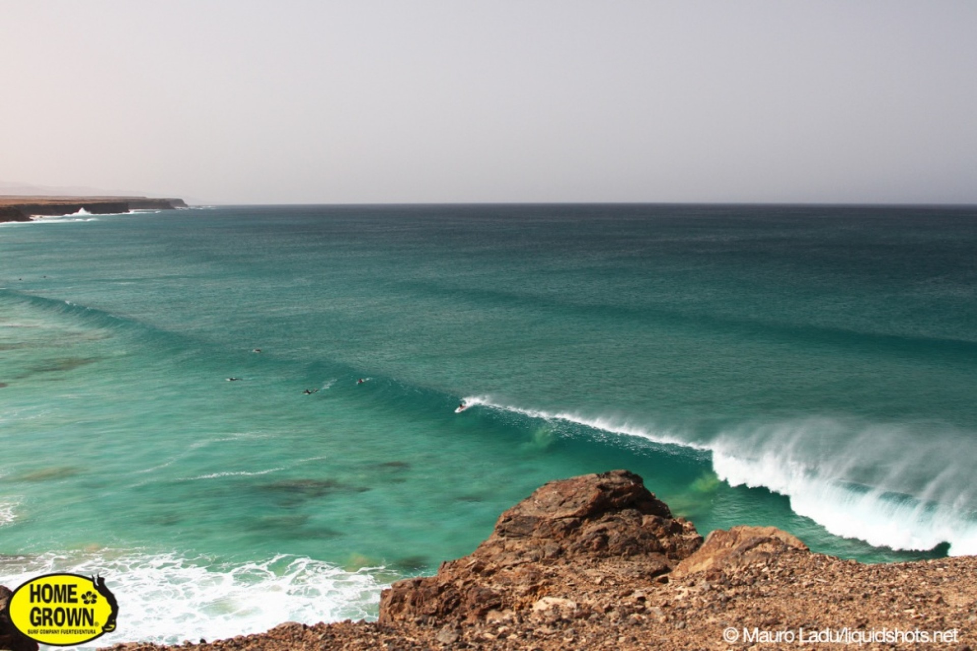 Homegrown's photo of Cotillo
