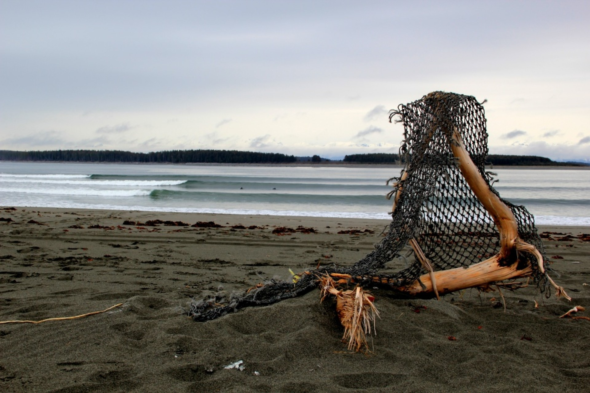 fmunoz's photo of Yakutat (Cannon Beach)