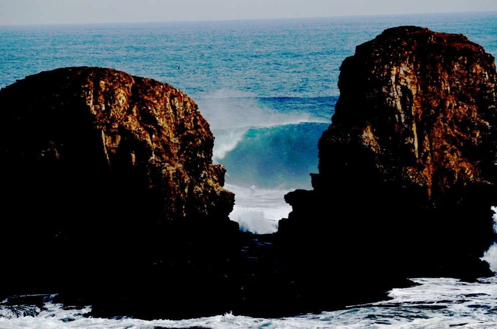 nancie brown's photo of Punta de Lobos