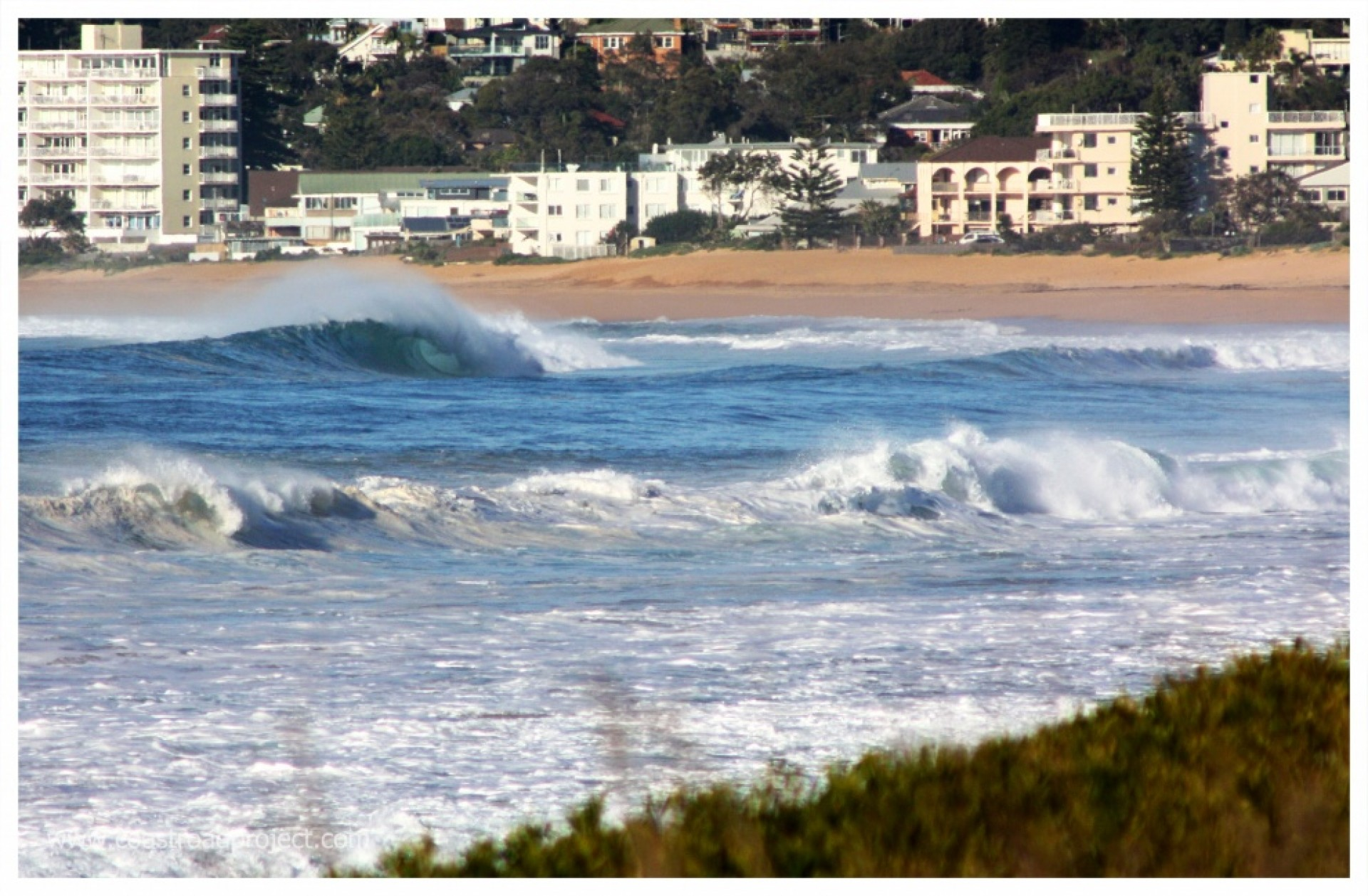 coastroad's photo of South Narrabeen