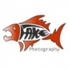 Fakefish Photography's avatar