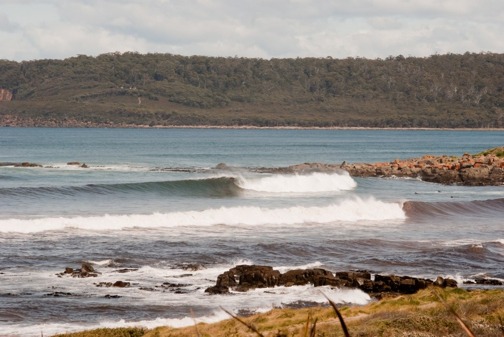 Finn Whitla's photo of Cloudy Bay