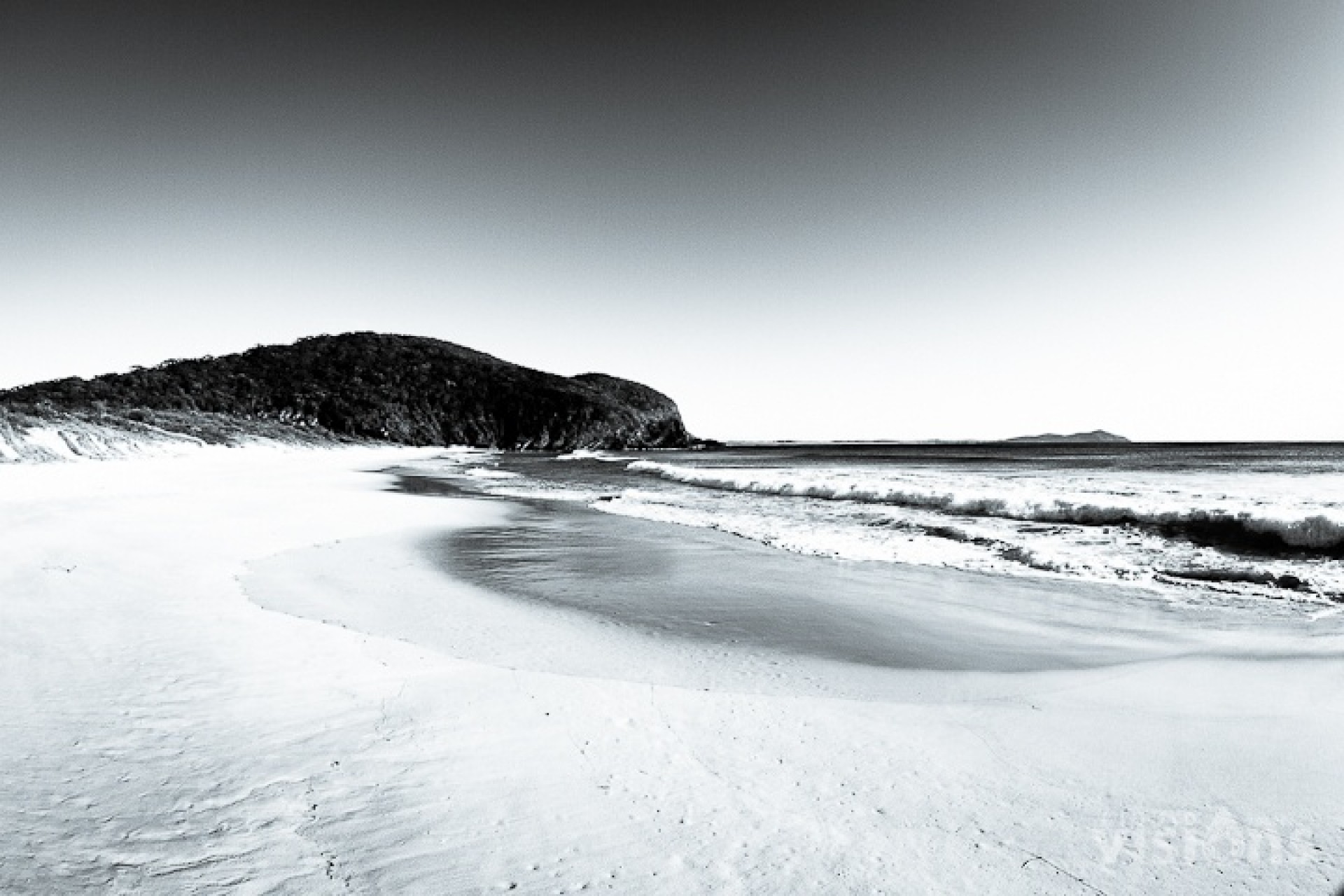 JasonCorrotoPhoto's photo of Forster