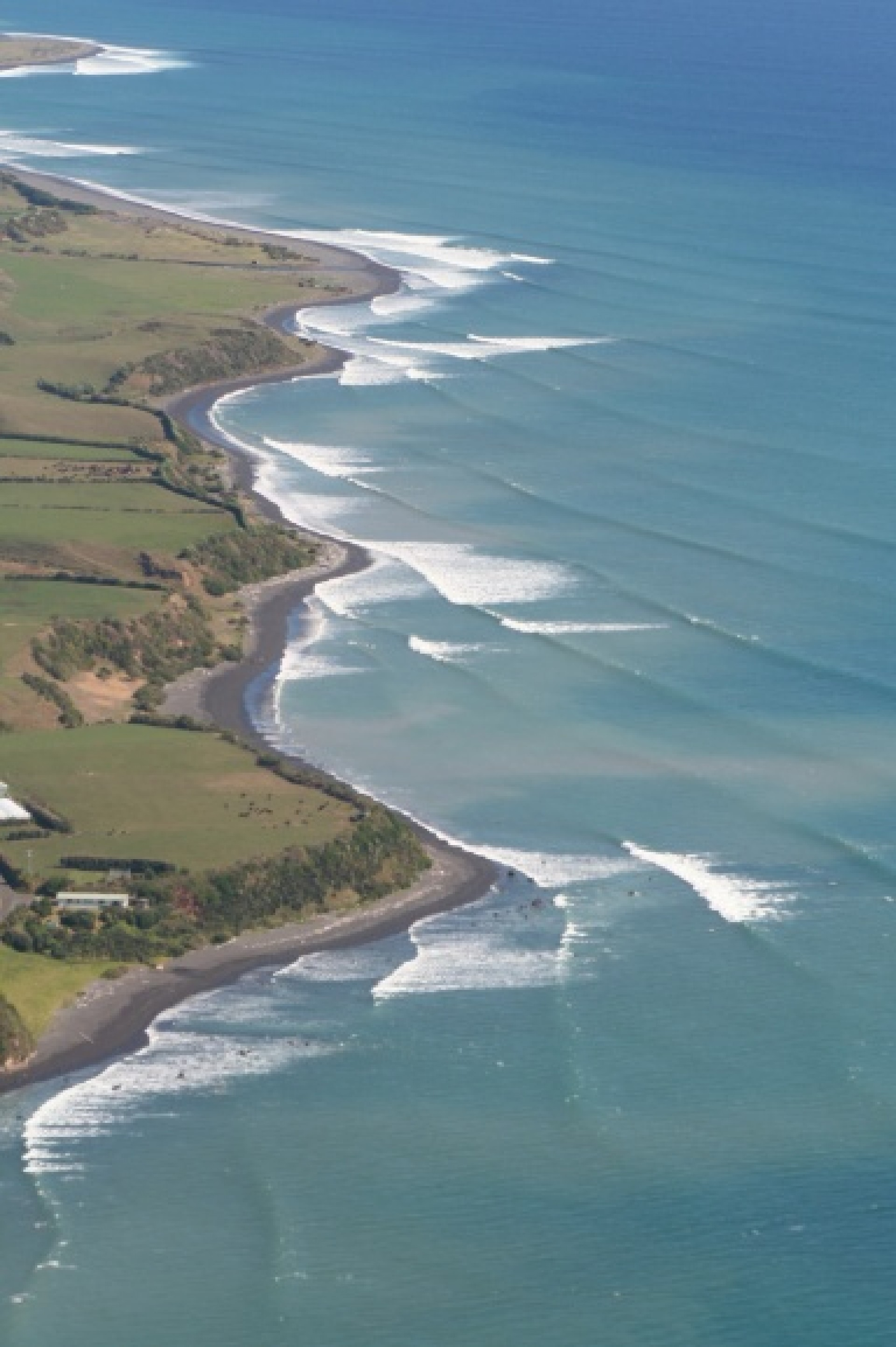 greg s's photo of New Plymouth