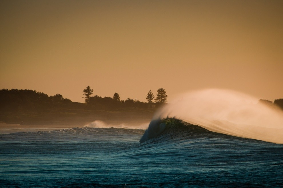 cgrundy's photo of Dee Why Point