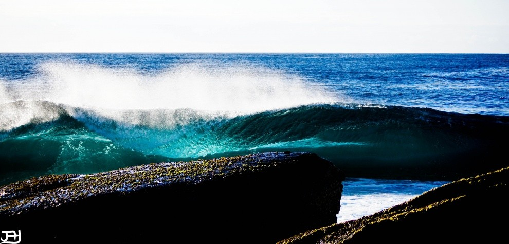 JayCPHOTOGRAPHY's photo of Dolphin Point