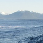 Photo of Shoals Reef/Wall